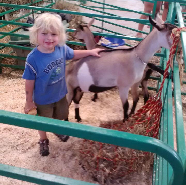 Westley loves helping with the goats