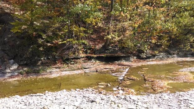 fall pic 3