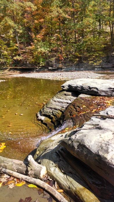 fall pic 6