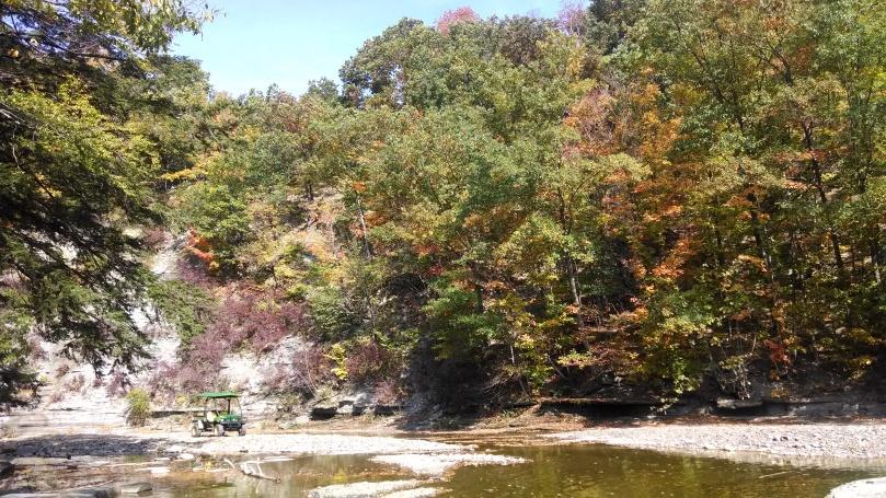 fall pic 4