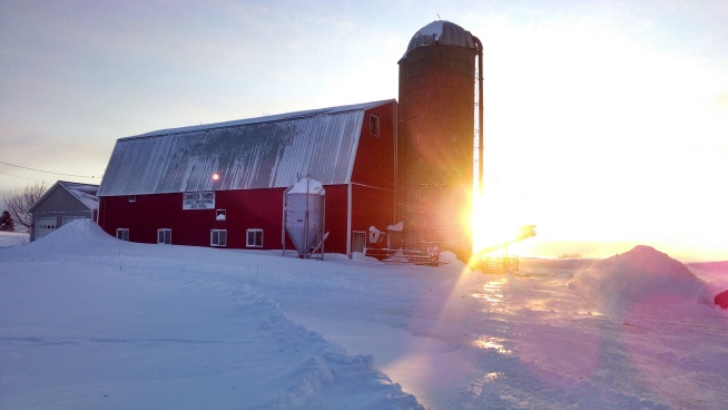 Sunset Winter on the Farm (https://thefarmingdaughter.com/2015/02/26/winter-on-the-farm)
