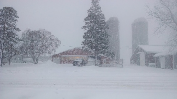Blizzarding Winter on the Farm (https://thefarmingdaughter.com/2015/02/26/winter-on-the-farm)