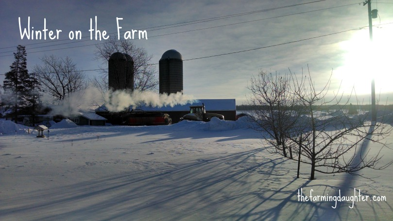 Winter on the Farm (https://thefarmingdaughter.com/2015/02/26/winter-on-the-farm)