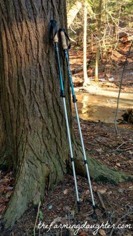 my-trekking-poles